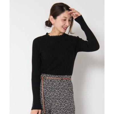 ニット Selva rib knit / セルバリブニット