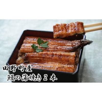 田野町産うなぎの蒲焼き2本