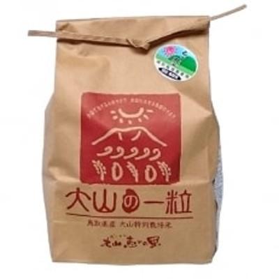 特別栽培米こしひかり3kg(白米) MS-10
