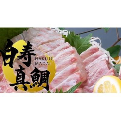 愛媛の有名店「寿司和泉屋」若大将が捌いた「白寿真鯛」と秘伝のタレ
