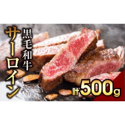 TC0-9 川合精肉店黒毛和牛(福島牛)サーロインステーキ用500g