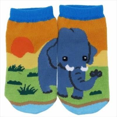 ゾウ 子供用靴下 キッズぴったんこソックス アニマルフレンズ アンクルソックス グッズ