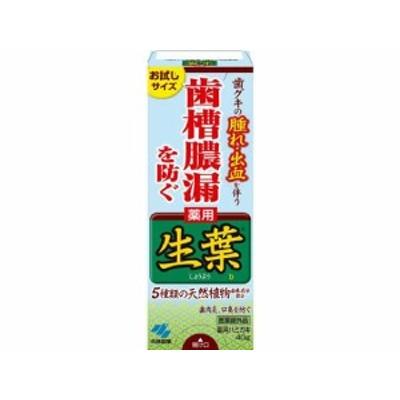 生葉(しょうよう)b40g 小林製薬