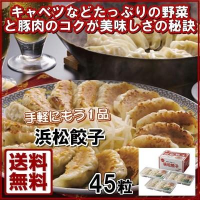 浜松餃子(45粒) 21-3016-516 餃子 ぎょうざ 肉料理 おそうざい お取り寄せグル
