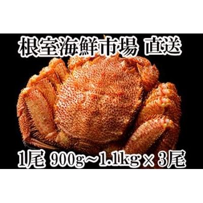 D-11015 ボイル毛がに900g~1.1kg×3尾