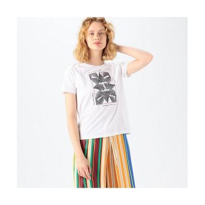 <CABaN/キャバン> CABaN Costarica アートTシャツ 11ホワイト【三越伊勢丹/公式】
