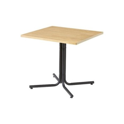 東谷(あづまや) END-223TNA ダリオ カフェテーブル (END223TNA)