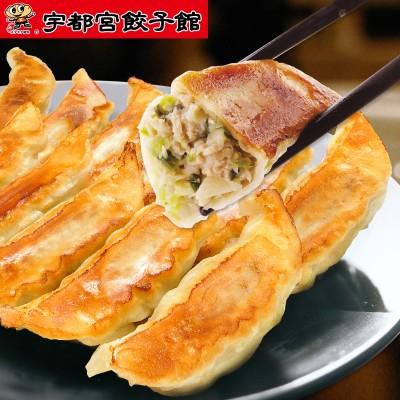定番人気「健太餃子」詰合せ 64個(宇都宮餃子館)