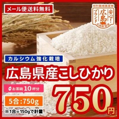 米 送料無料 広島県産 特別栽培米 カルゲン米 コシヒカリ 令和2年産 お試し 750g ポイント消化 ※メール便のため代引・日時指定不可