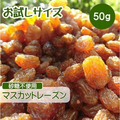 ドライフルーツ レーズン 50g ポイント消化 マスカットレーズン 砂糖不使用 無添加 ぶどう ブドウ 干しブドウ 無糖 小分け ギフト  お試しサイズ CFL