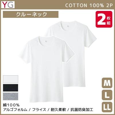 YG ワイジー クルーネックTシャツ 半袖丸首 2枚組 グンゼ GUNZE