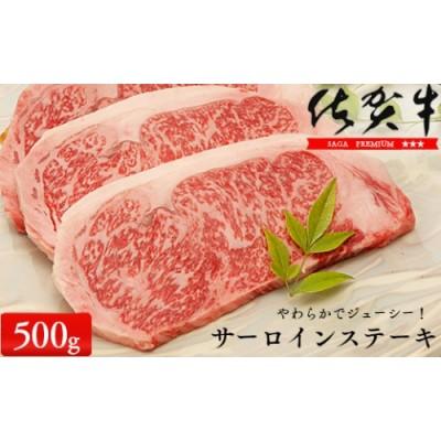 N30-16 佐賀牛サーロインステーキ500g(250g×2枚)【やわらかでジューシー!】