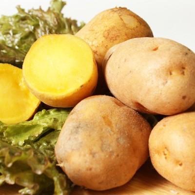 北海道十勝産 インカの目覚め LMサイズ3kg まるで栗やサツマイモのような濃厚な甘さが特徴的な人気の品種です。/十勝うまいものや[冷蔵発送]