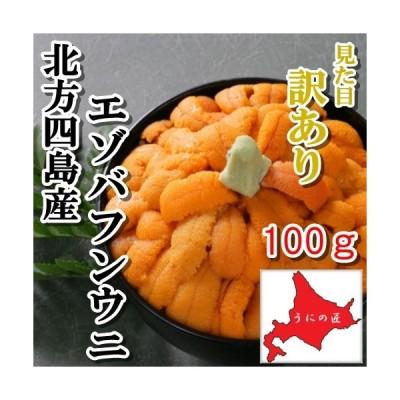 【訳あり】無添加 塩水うに100g(エゾバフンウニ)(北方四島産)(北海道うに丼)