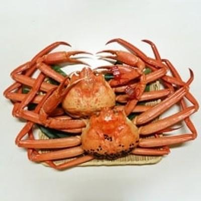 【特選】新湊産紅ズワイガニ・孫七タグ付き(約1kg×2尾)