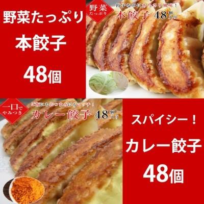 【hon48curry48】本餃子48個!カレー餃子48個入り!