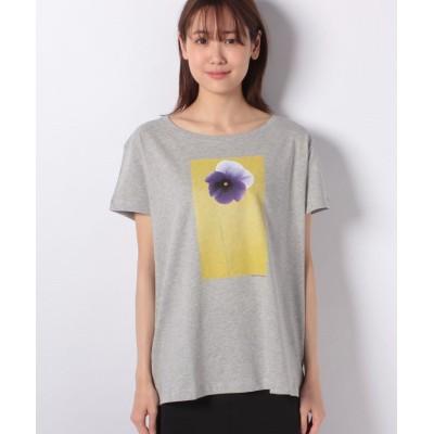 (BENETTON (women)/ベネトン レディース)コットンプリント半袖Tシャツ・カットソー/レディース グレー