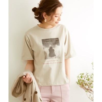 tシャツ Tシャツ オーガニックコットンアソートフォトプリントTシャツ