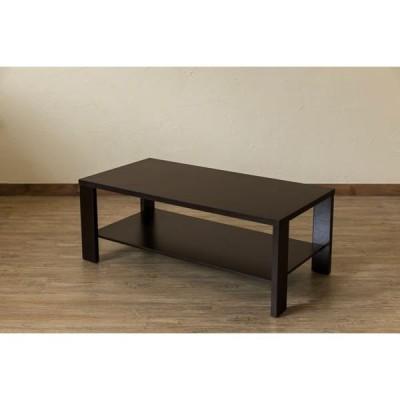 木目調センターテーブル/ローテーブル 〔幅100cm×奥行50cm〕 ウォールナット 収納棚付き 『KENNY』〔代引不可〕
