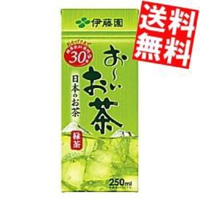 【送料無料】伊藤園お~いお茶 緑茶250ml紙パック 24本入[のしOK]big_dr