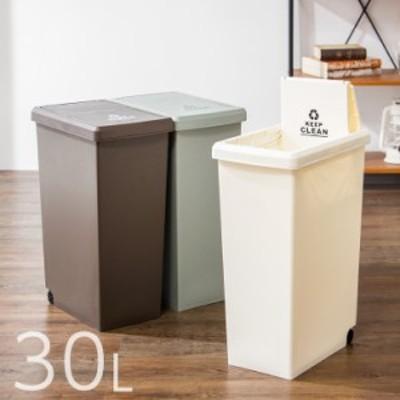 スライドペール 30L ふた付き 幅24cm 30リットル ごみ箱 ダストボックス キッチン スリム コンパクト プラスチック 角型(代引不可)【送料