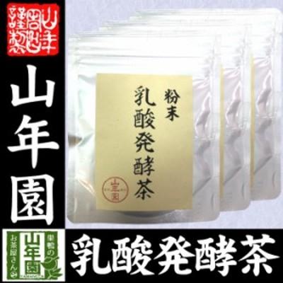 国産100% 静岡県掛川産 乳酸発酵茶 40g×3袋セット 後発酵茶 送料無料 健康茶 妊婦 ダイエット セット ギフト プレゼント 敬老の日 お歳