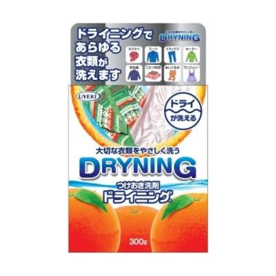 【あわせ買い1999円以上で送料無料】UYEKI(ウエキ) つけおき洗剤 ドライニング 300g