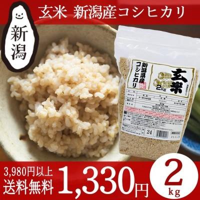 お米 2kg 玄米 新潟産コシヒカリ 条件付送料無料 新潟米 チャック付パック 令和元年産 ギフト 内祝い