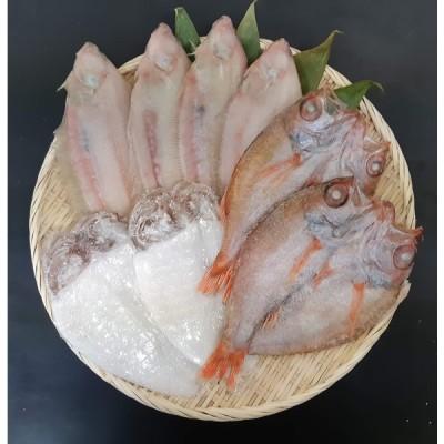 浜の匠あけぼの のどぐろ、笹かれい、白いかセット 日本海で漁獲した大型のどぐろに白身の女王ささがれいを加えた高級干物セット ご贈答に最適 送料無料