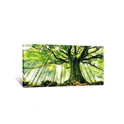 特別価格(クリエイティブ・アート) Creative Art 大判 キャンバスアート 春の森林 自然 木 壁面装飾 フォトプリント フレーム付き オフィス 2好評販売中