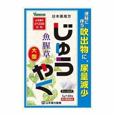 【第3類医薬品】山本漢方製薬 大型じゅうやく どくだみ「分包」 5g×48包