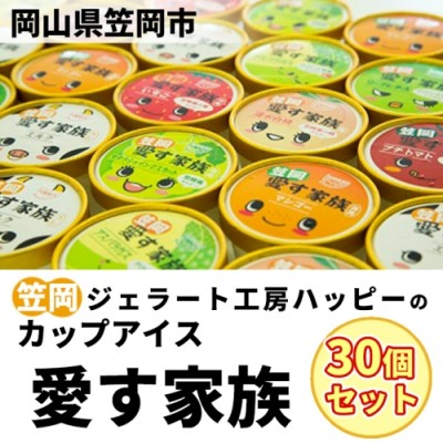 C-05 笠岡ジェラート工房ハッピーのカップアイス(愛す家族)30個セット