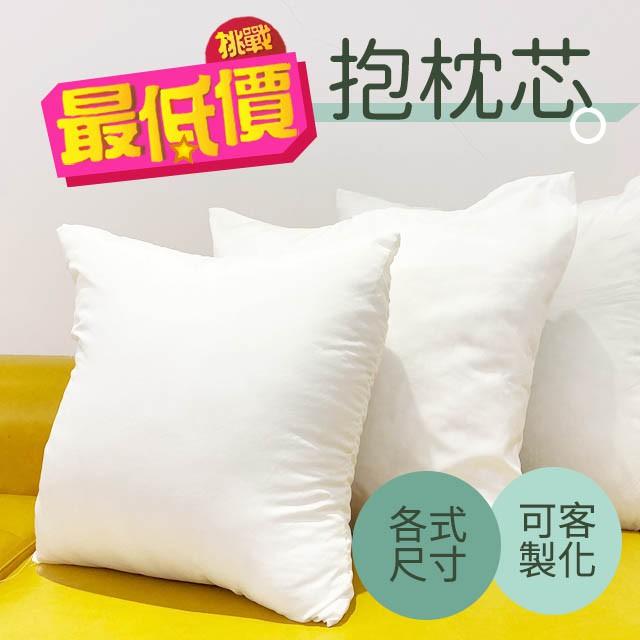 枕心 抱枕心 現貨 台灣製 多種尺寸 可清水洗滌 枕芯 可客制尺寸 MIT