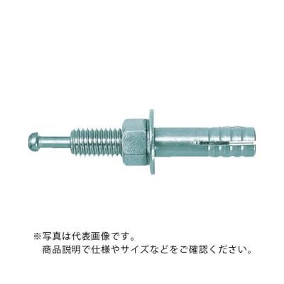 ユニカ ルーティアンカー Cタイプ(三価クロメート)  ( C-860 )(50本セット)ユニカ(株)