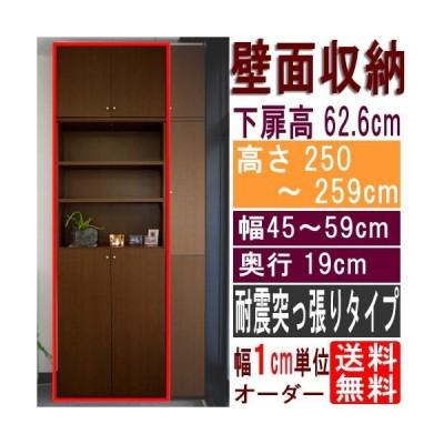 薄型壁面CD棚 収納棚 高さ250〜259cm幅45〜59cm奥行19cm 下扉高さ62.6cm