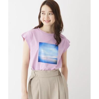 BEAUTE DE OPAQUE(ボーテ ド オペーク) 【洗える】フォトプリントフレンチスリーブTシャツ
