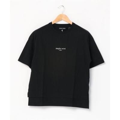 tシャツ Tシャツ 二段ロゴTシャツ 汗染みが目立ちにくい ベストセラー機能性アイテム 「ZERO STAIN(ゼロステイン)」