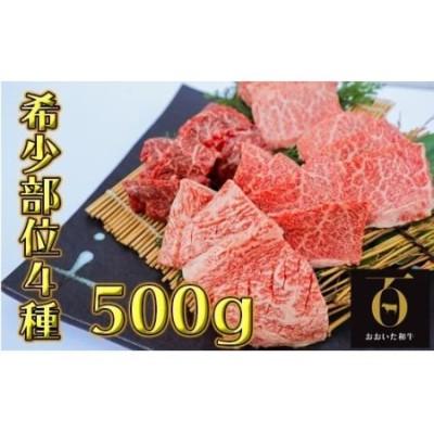 希少部位4種焼き肉セット500g【匠牧場】おおいた和牛(特製タレ付)<56-A9001>