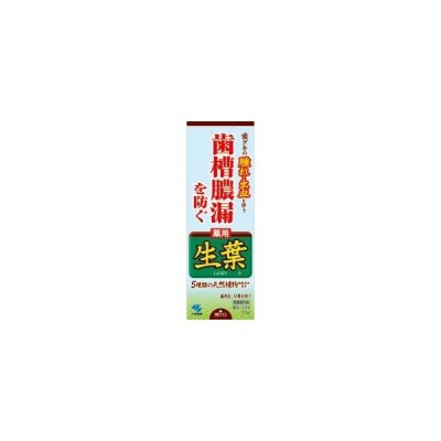 小林製薬 薬用 生葉b(しょうよう) 薬用ハミガキ 100g