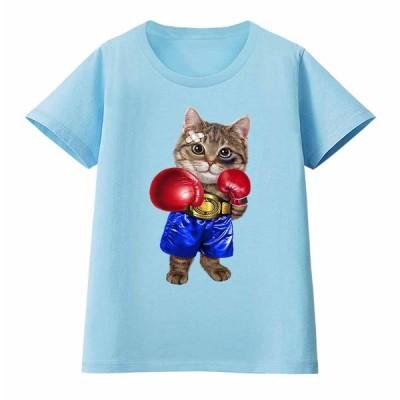 【ボクシング をする 猫 ねこ】レディース 半袖 Tシャツ by Fox Republic