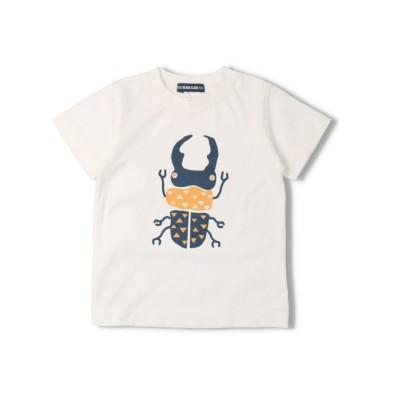 【こどもの森】  LITTLE BEAR CLUB (リトルベアークラブ) 虫プリントTシャツ 80cm~130cm S34814 キッズ その他系3 90 KODOMONOMORI