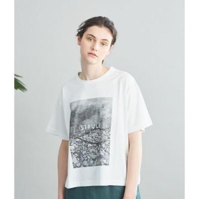 SIPULI [Luomu]オーガニックコットン天竺 スローガンワイドTシャツ