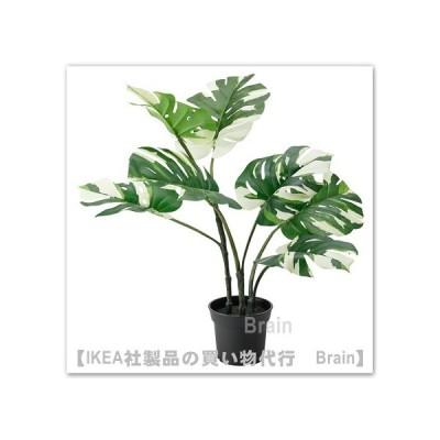 IKEA/イケア FEJKA/フェイカ 人工観葉植物62 cm モンステラ