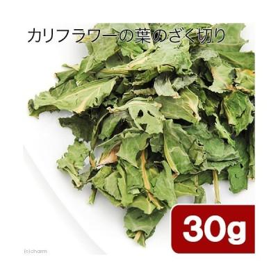 国産 カリフラワーの葉のざく切り 30g 小動物のおやつ うさぎ ハムスター 無添加 無着色