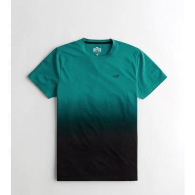 ホリスター クルーネック Tシャツ メンズ 半袖 ティール