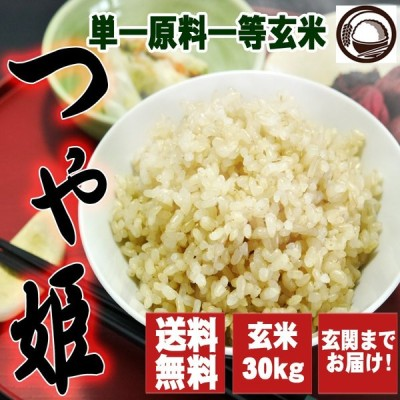 令和2年産  宮城県産つや姫 玄米 30kg お米 送料無料