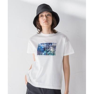 MAYSON GREY / 【socolla】フラワーフォトプリントT WOMEN トップス > Tシャツ/カットソー