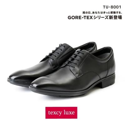 texcy luxe(テクシーリュクス) ビジネスシューズ 革靴 メンズ 本革 防水タイプ ゴアテックス GORE-TEX プレーントゥ TU-8001