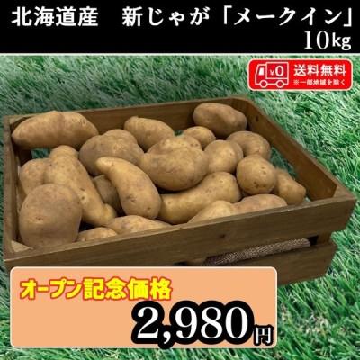 送料無料 北海道産 メークイン 約10kg 新じゃが じゃがいも 馬鈴薯