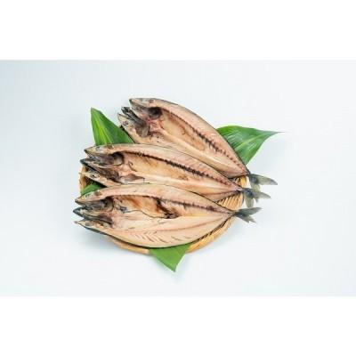 干物 さば サバ 鯖 とろさば トロサバ 250g以上 3枚